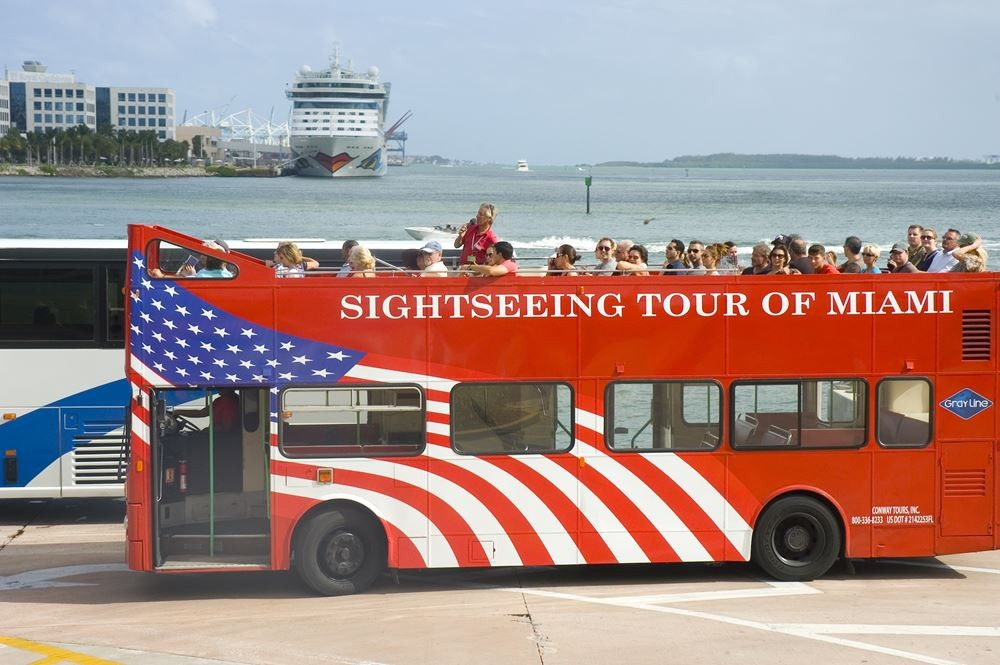 Hop On Hop Off Sightseeing 1 Day Pass