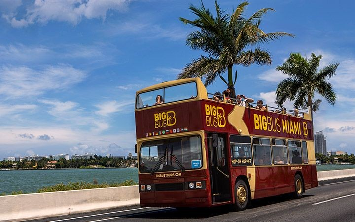 Classic Hop On Hop Off Sightseeing- 1 Day Pass