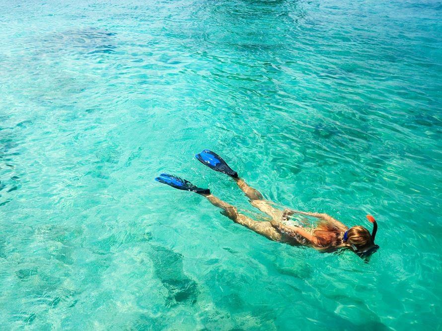 3 Hour Snorkel Adventure