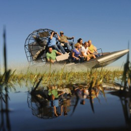 Everglades Park Single Admission with Transportation (1 Guest only)