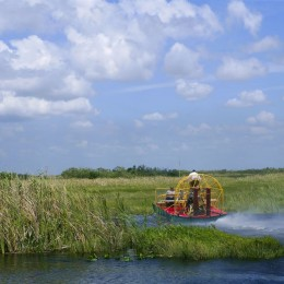 Everglades Gator Park Single Admission with Transportation