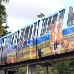 Zoo Miami Safari Package